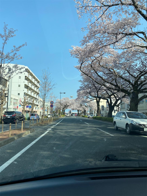f:id:terakoyakun:20210402201528j:image
