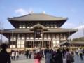 [奈良]東大寺大仏殿