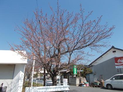 f:id:terashimakeiji:20180328135554j:plain