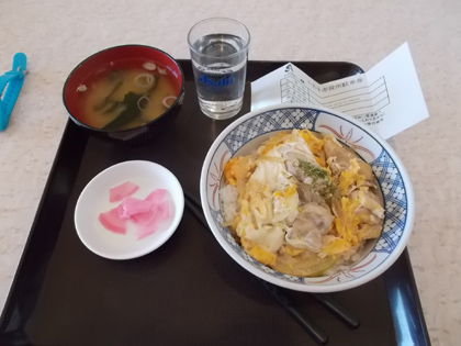 f:id:terashimakeiji:20180410222656j:plain