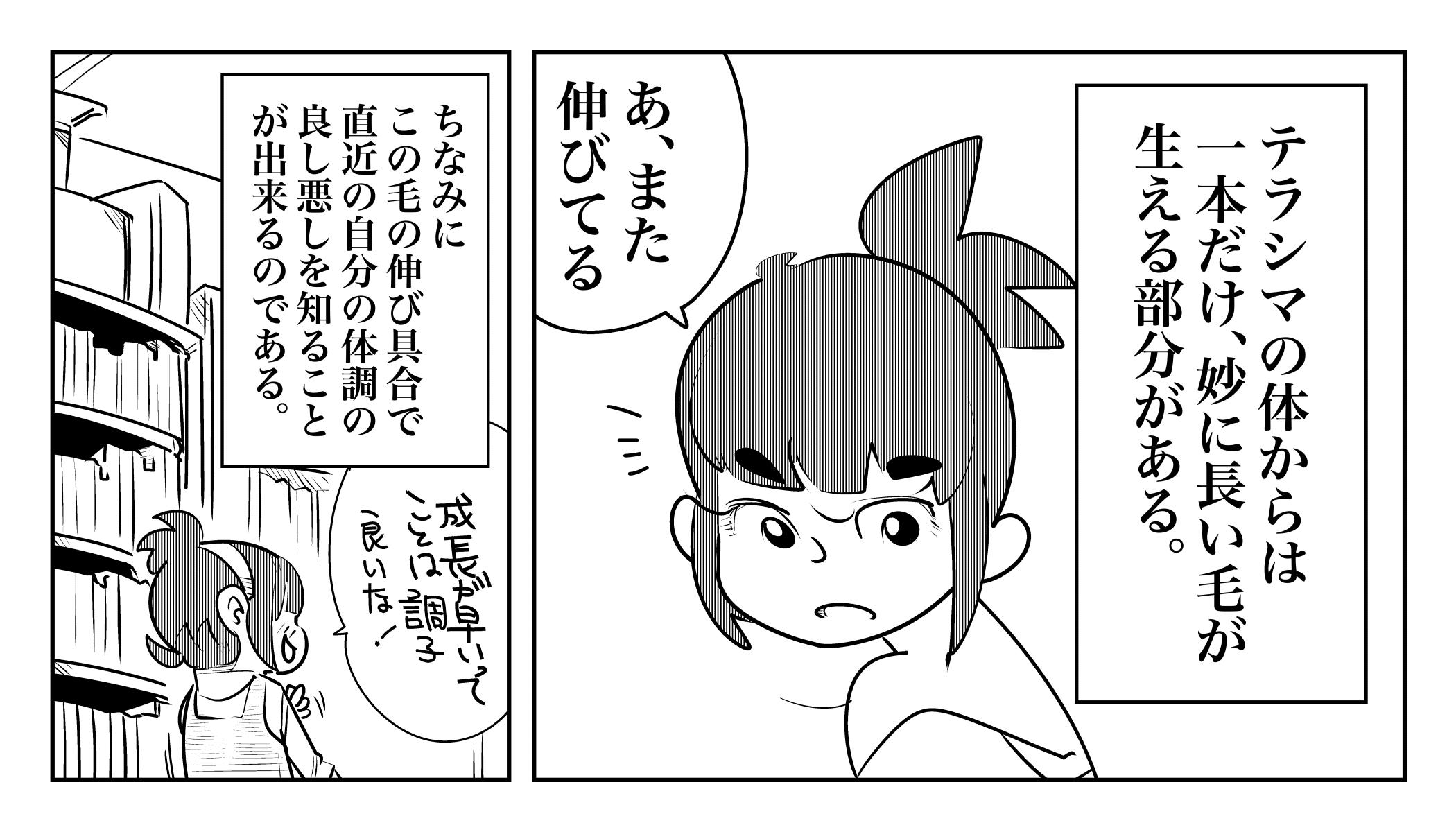 f:id:terashimaru117:20191120013344j:plain