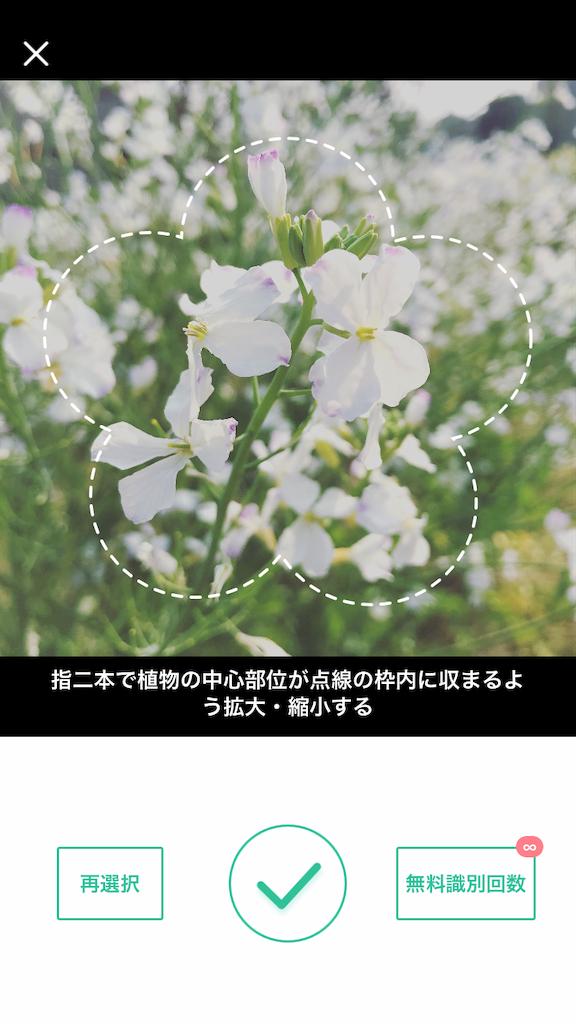 f:id:teratchi:20190424111242p:image
