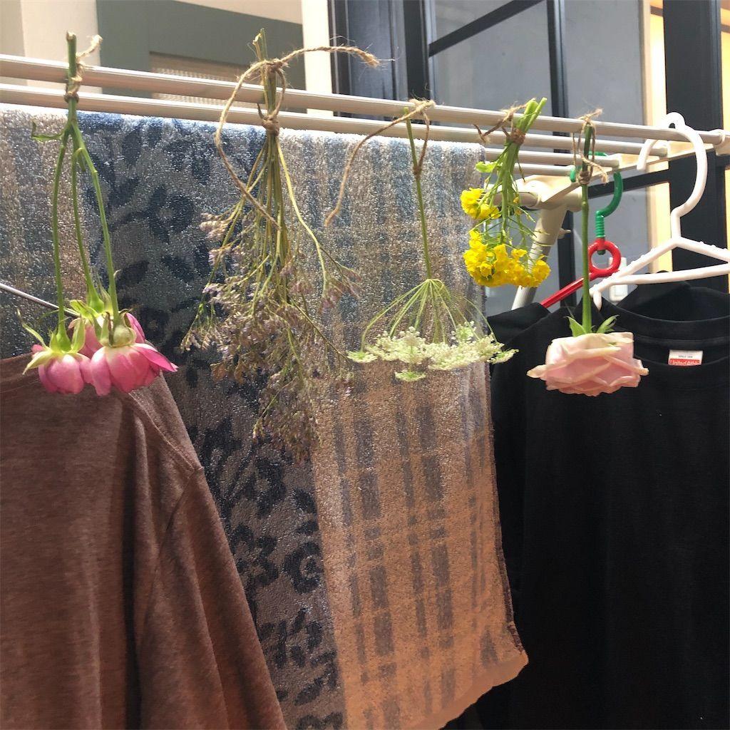 洗濯物と一緒に花を吊るしてドライフラワーを作る