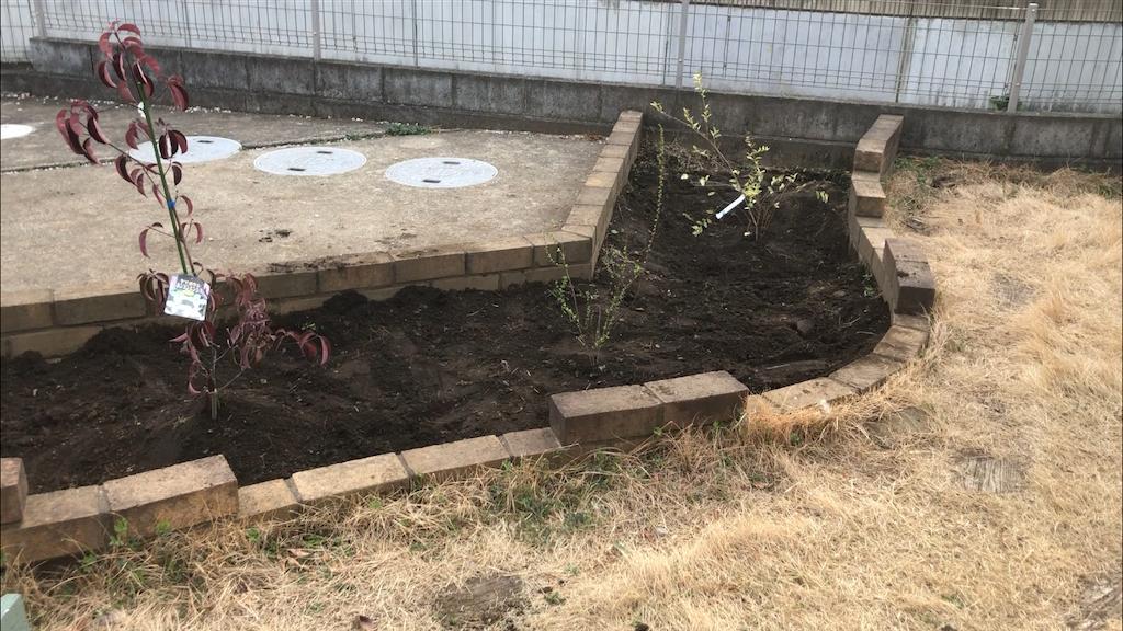 左から、常緑ヤマボウシ、ピンクユキヤナギ、シルバープリペット