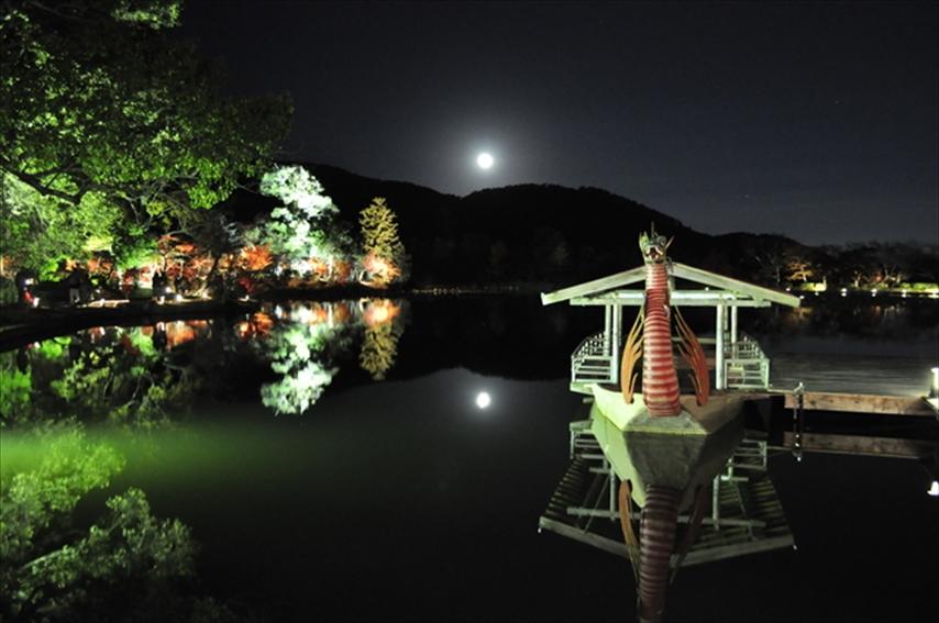 【左京区 不動産】大覚寺に行こう