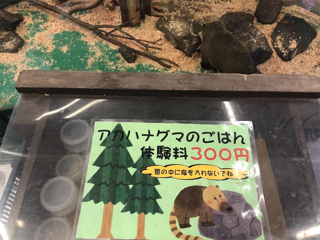 f:id:teru7000:20210225195552j:image