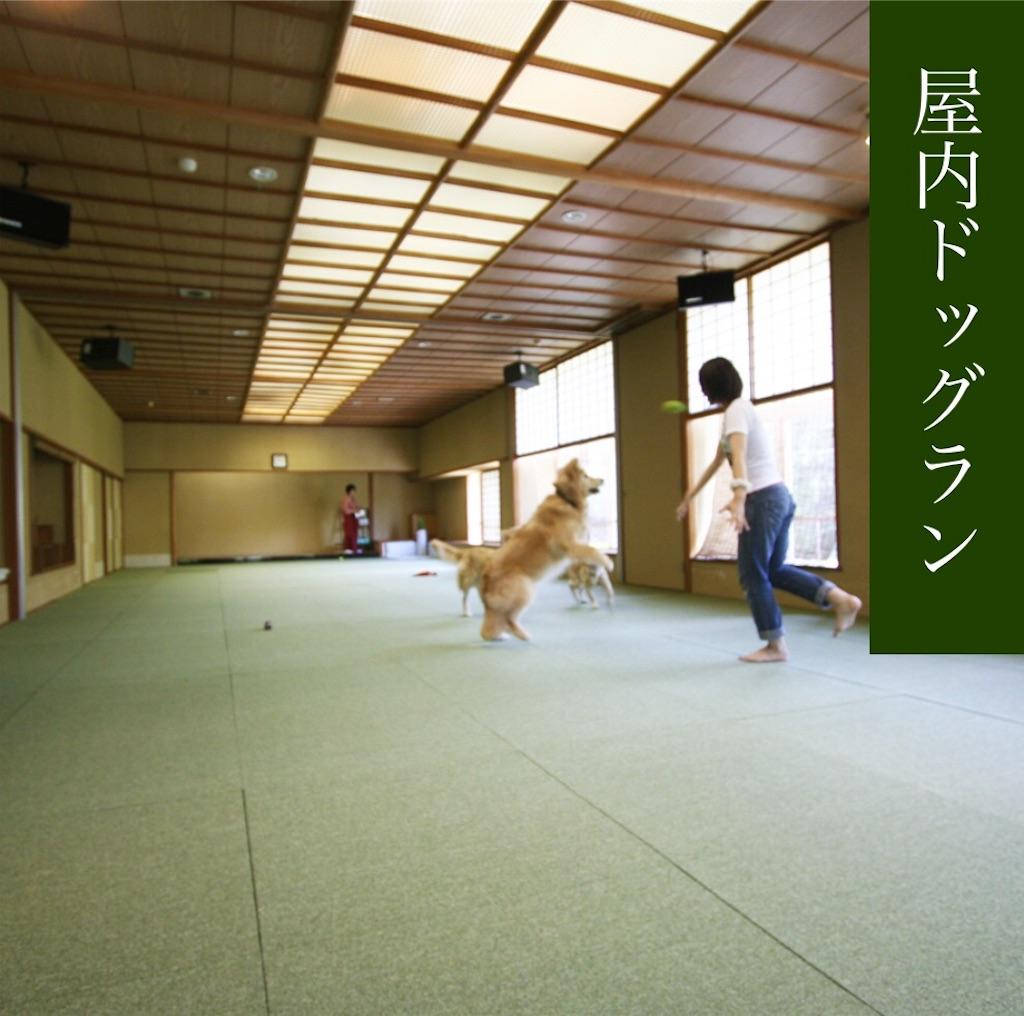 f:id:teru7000:20210228075731j:image