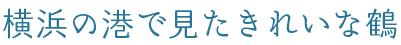 f:id:teruaki-sugiura:20160501221317p:plain