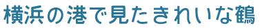 f:id:teruaki-sugiura:20160507161840p:plain