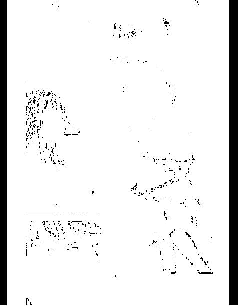 f:id:teruakipiano:20160726202825p:plain