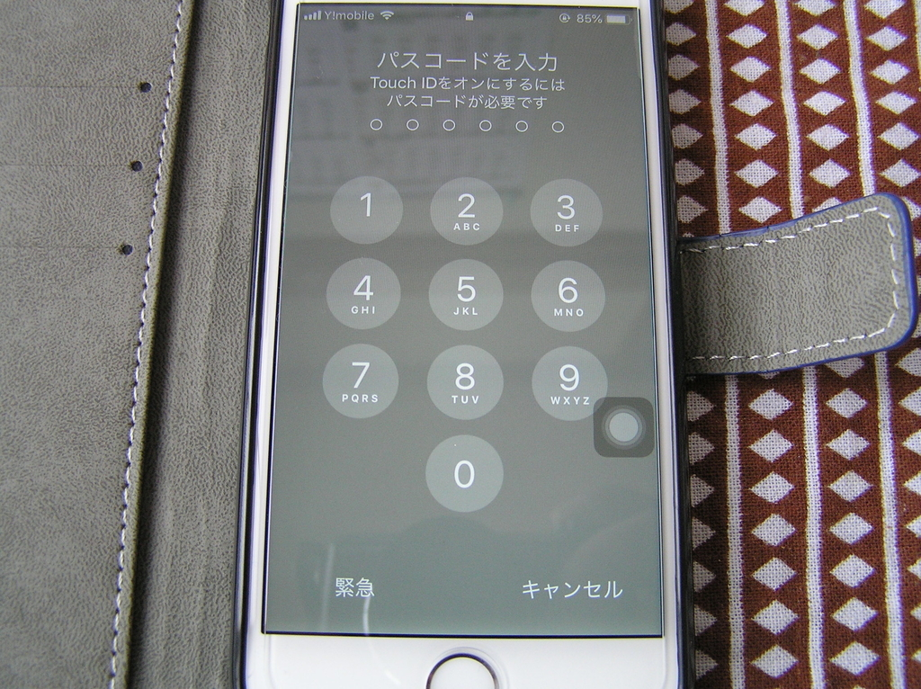 f:id:terubouzu-hare:20190223162108j:plain