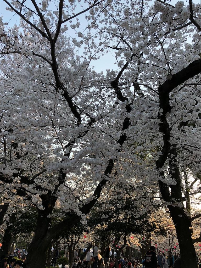 f:id:teruterubouzu-hareru:20180325233701j:image