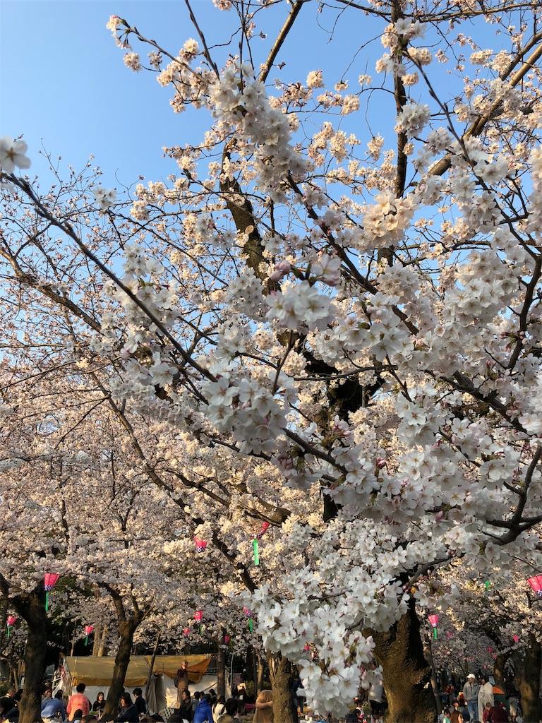 f:id:teruterubouzu-hareru:20180326212606j:image