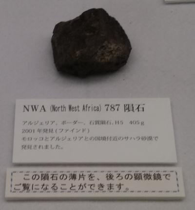 NWA787隕石