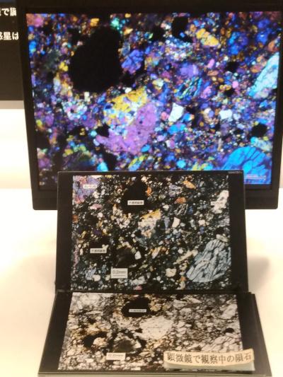 NWA787隕石顕微鏡画像