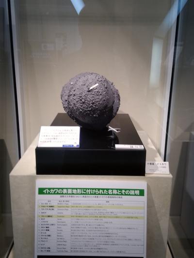 イトカワ模型