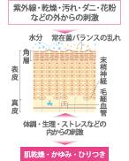 f:id:tesorosagashi:20181114112356j:plain