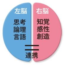 f:id:tesoukan-tamaokiraito:20170514225645j:image