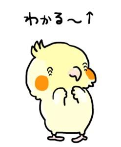 f:id:tesoukan-tamaokiraito:20170619113754j:image