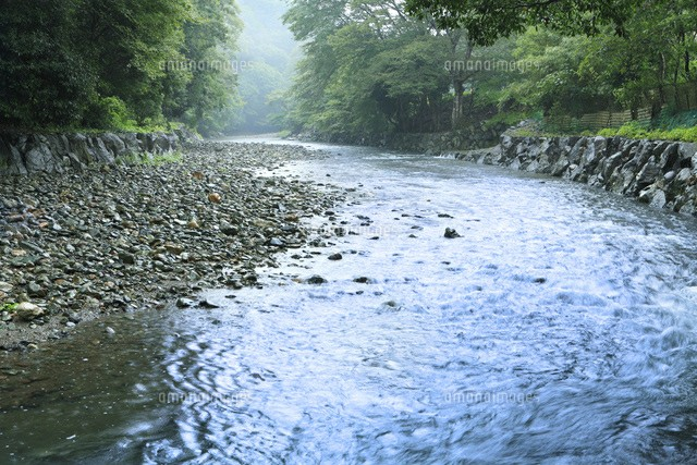 f:id:tesoukan-tamaokiraito:20170622112615j:image