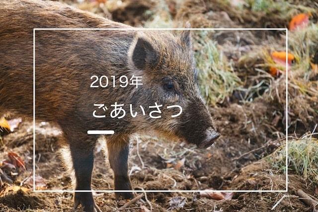 f:id:tetetenori:20190104100053j:plain