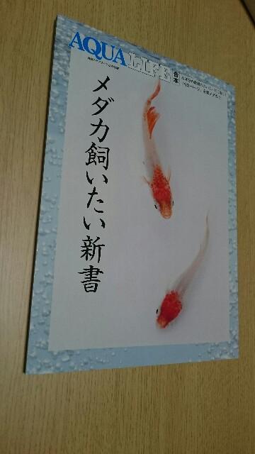 f:id:tetsu-blue:20161026215438j:image