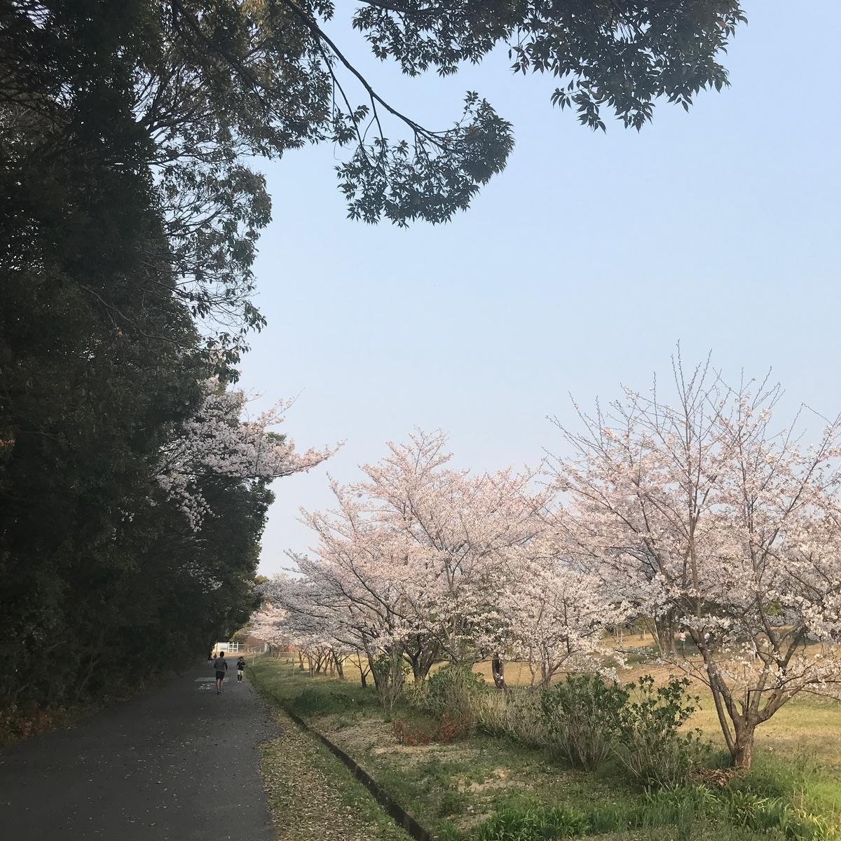 f:id:tetsu-san:20190407204454j:plain