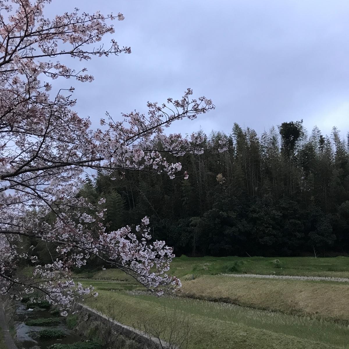 f:id:tetsu-san:20190412100157j:plain