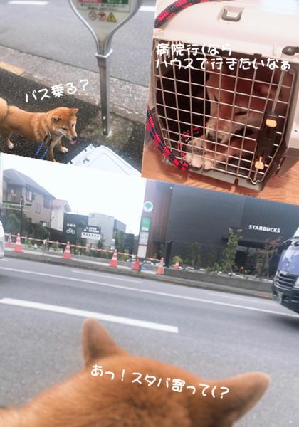 f:id:tetsujin64go:20190720164837j:plain