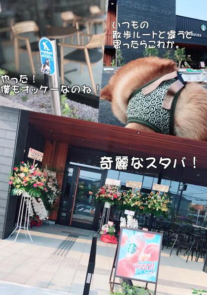 f:id:tetsujin64go:20190801074307j:plain