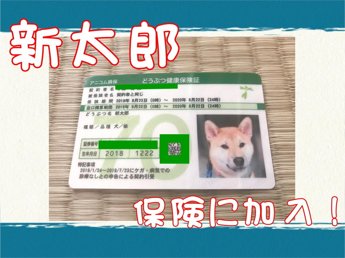 f:id:tetsujin64go:20190801102138j:plain