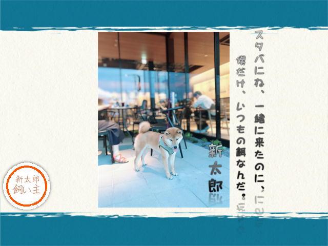 f:id:tetsujin64go:20190802194302j:plain
