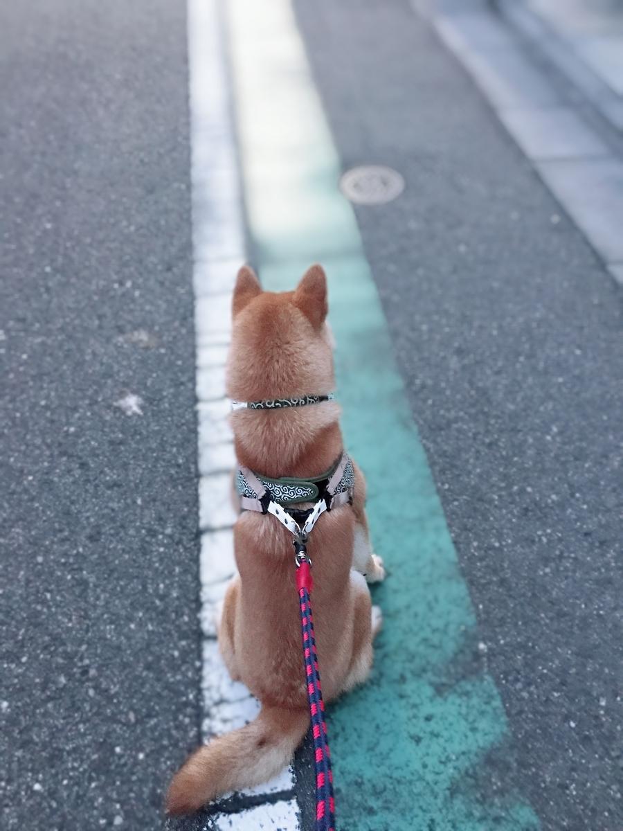 f:id:tetsujin64go:20190802194551j:plain