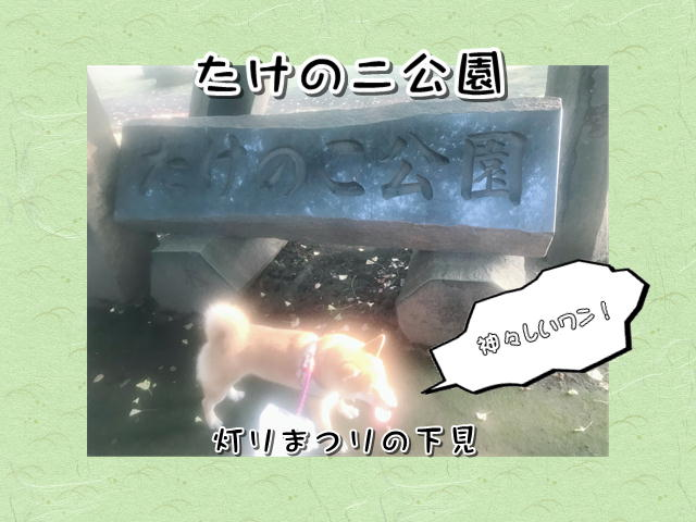f:id:tetsujin64go:20190803073044j:plain
