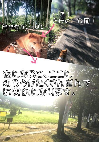 f:id:tetsujin64go:20190803073101j:plain