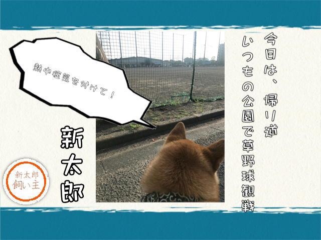 f:id:tetsujin64go:20190803073151j:plain
