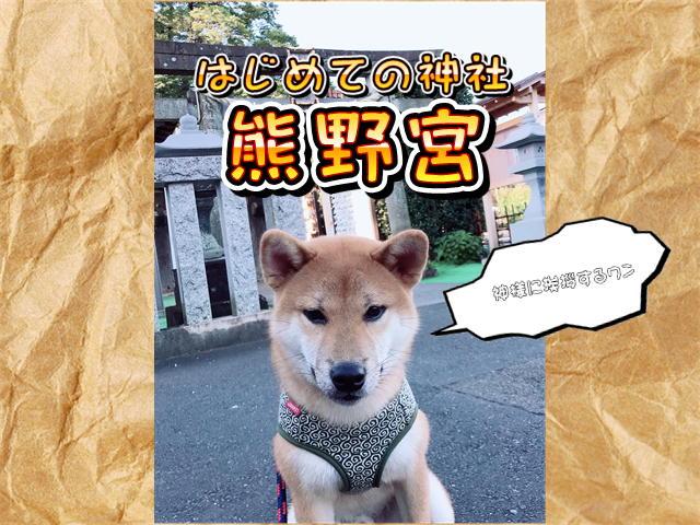 f:id:tetsujin64go:20190805063251j:plain