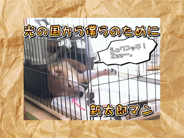 f:id:tetsujin64go:20190806164751j:plain