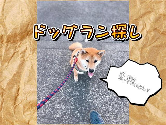 f:id:tetsujin64go:20190807073245j:plain