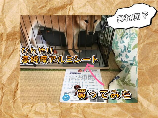 f:id:tetsujin64go:20190809212303j:plain