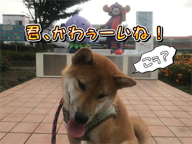 f:id:tetsujin64go:20190811073857j:plain