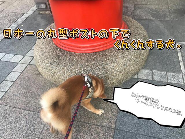f:id:tetsujin64go:20190811074344j:plain