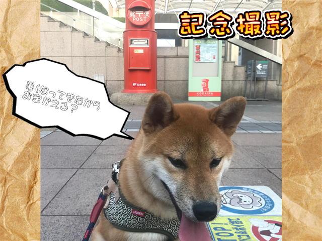 f:id:tetsujin64go:20190811074439j:plain