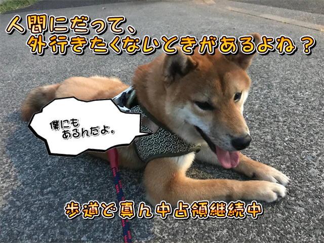 f:id:tetsujin64go:20190811192540j:plain