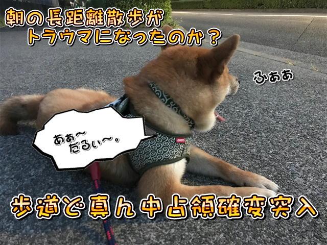 f:id:tetsujin64go:20190811192835j:plain