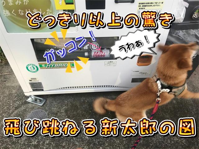 f:id:tetsujin64go:20190812073814j:plain