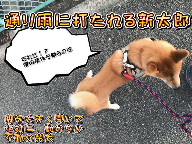 f:id:tetsujin64go:20190813194357j:plain