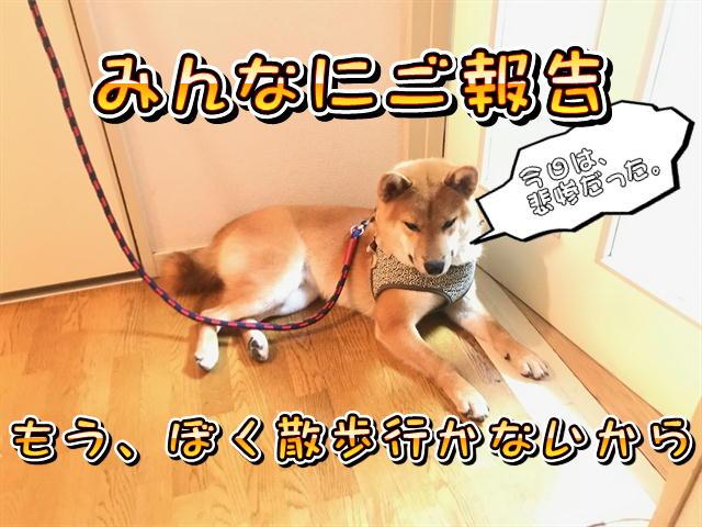 f:id:tetsujin64go:20190813194603j:plain