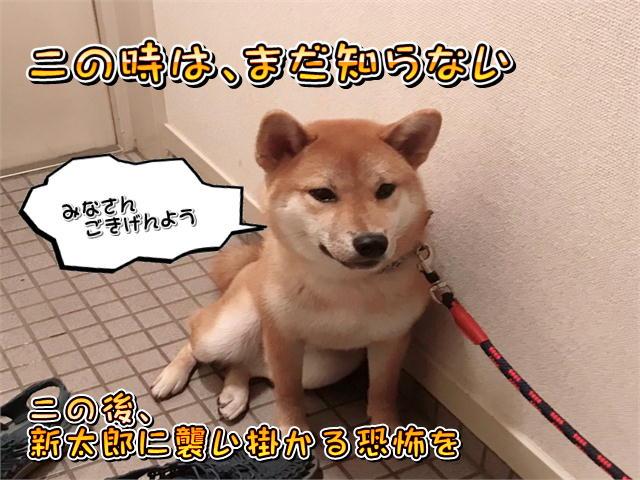 f:id:tetsujin64go:20190814072955j:plain