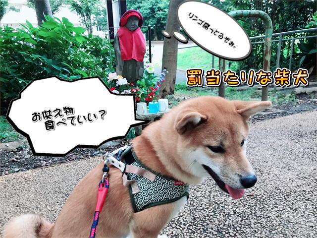f:id:tetsujin64go:20190815073652j:plain
